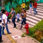 Campañas 2011 15